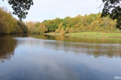 7-POOLS-OF-SUTTON-PARK-28-10-20-003-2