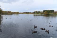 7-POOLS-OF-SUTTON-PARK-28-10-20-021-2