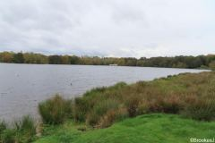 7-POOLS-OF-SUTTON-PARK-28-10-20-029-2