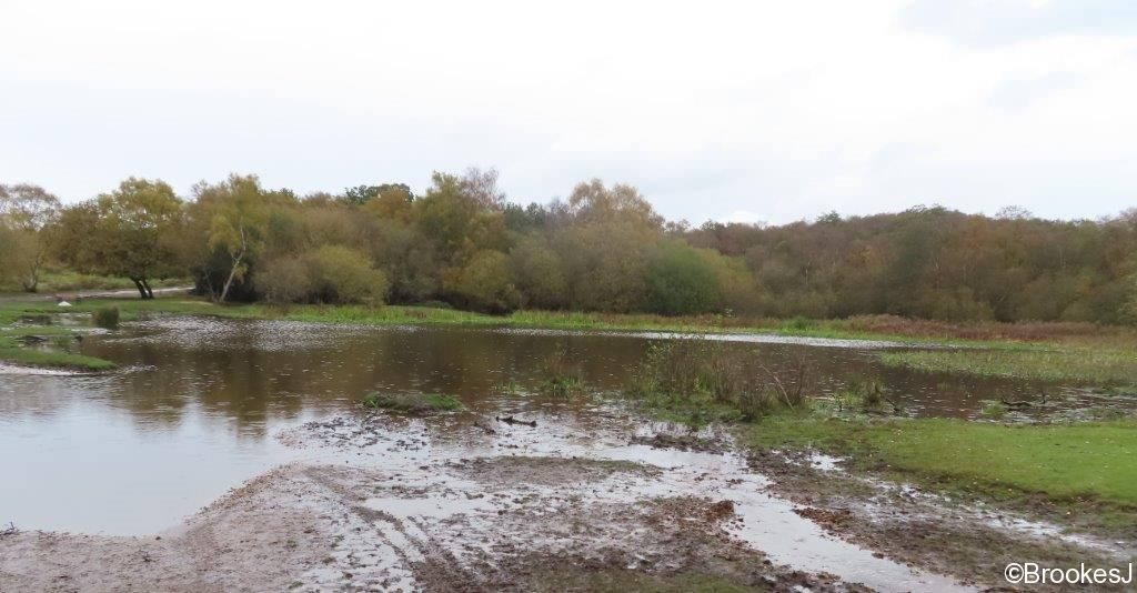 7-POOLS-OF-SUTTON-PARK-28-10-20-011-2