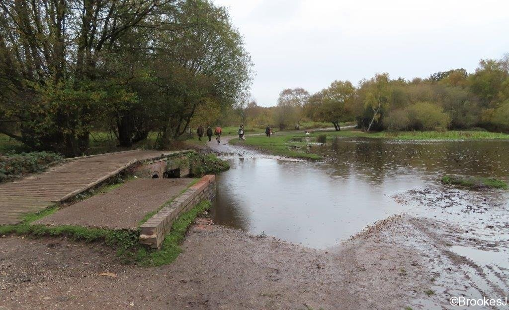 7-POOLS-OF-SUTTON-PARK-28-10-20-012-2