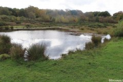 7-POOLS-OF-SUTTON-PARK-28-10-20-017-2