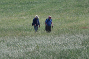 lichfield-walks-018