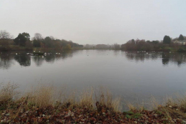 WITTON-LAKES-and-BROOKVAIL-PARK-29-11-20-012
