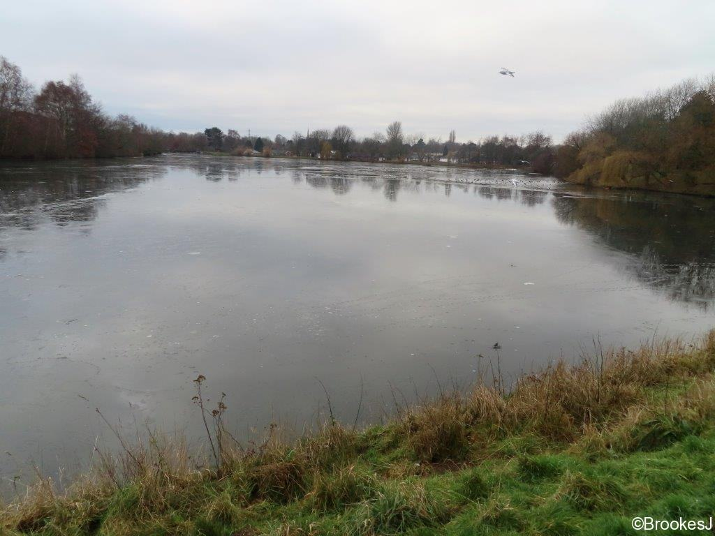 WITTON-LAKES-AND-BROOKVALE-PARK-10-1-21-003