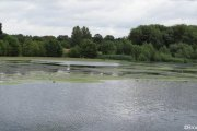 Witton-Lakes-23-8-20-008