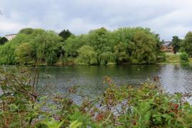 Witton-Lakes-23-8-20-010