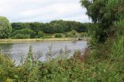 Witton-Lakes-23-8-20-011