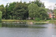 Witton-Lakes-23-8-20-012