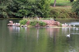 Witton-Lakes-23-8-20-020