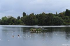 Witton-Lakes-23-8-20-028