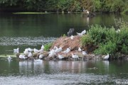 Witton-Lakes-23-8-20-032