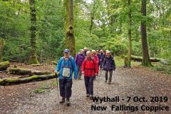 2019_10_07_wythall_new_fallings